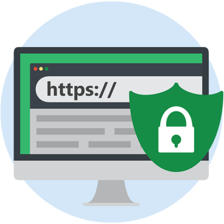 100% Secure Website